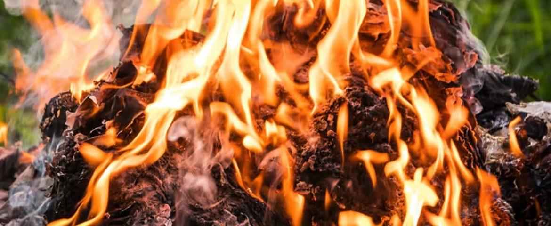 Можно ли сжечь мусор? Сжигание или вывоз  мусора?