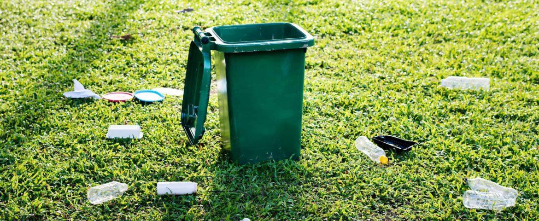 Вывоз  мусора из лесов и загородных зон