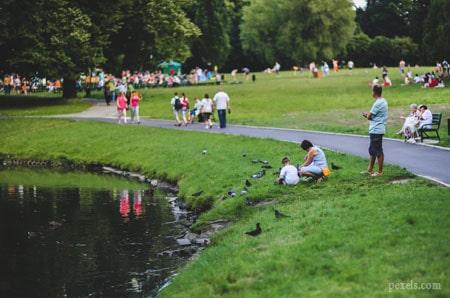 парк без мусора фото